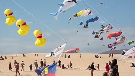 kite_menu.jpg