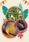 Saint Lucia animals