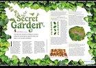 Creative topic: The Secret Garden