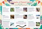 Animals of Saint Lucia