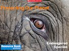 Home Learning: Protecting Our Planet – Endangered Species