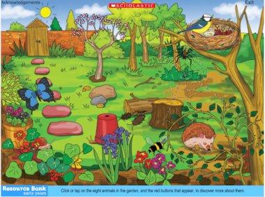 Find the habitats – interactive resource