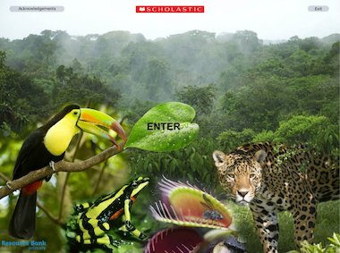 Rainforest factfile - interactive